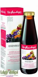 Dr. Steinberger Eisenblut Plus szirup 450ml