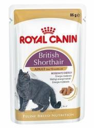 Royal Canin FHN British Shorthair 85g