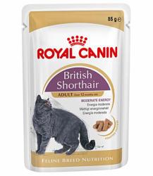 Royal Canin FHN British Shorthair 6x85g