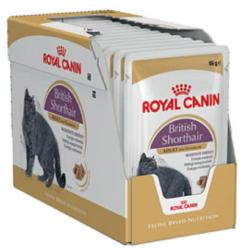 Royal Canin FHN British Shorthair 12x85g