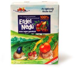 Natbolé Erdei vegyes gyümölcslé 5L