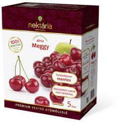 Nektária Meggy almával gyümölcslé 5L
