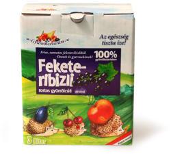 Natbolé Feketeribizli almával gyümölcslé 3L