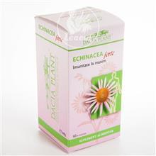 DACIA PLANT Echinacea Forte - 60 comprimate