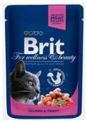 Brit Premium Cat Salmon & Trout 100g