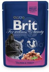 Brit Premium Cat Salmon & Trout 24x100g