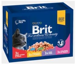 Brit Premium Cat Family Variety 12x100g