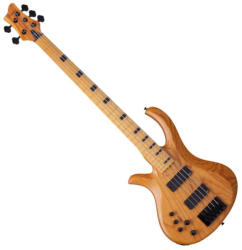 Schecter Riot-5 Session LH