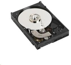 "Dell 3.5"" 1TB 7200rpm 400-ALEI"