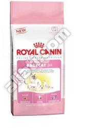 Royal Canin Mother & Babycat 2x400g