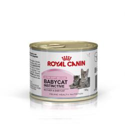 Royal Canin Mother & Babycat Tin 12x195g