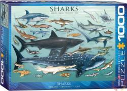 EUROGRAPHICS Sharks 1000 db-os (6000-0079)
