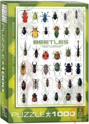 EUROGRAPHICS Beetles 1000 db-os (6000-0081)