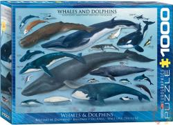 EUROGRAPHICS Whales and Dolphins 1000 db-os (6000-0082)