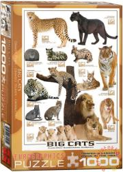 EUROGRAPHICS Big Cats 1000 db-os (6000-0125)