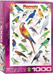 EUROGRAPHICS Parrots 1000 db-os (6000-0126)