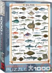 EUROGRAPHICS Sea Fish 1000 db-os (6000-0313)