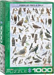 EUROGRAPHICS Birds of Prey & Owls 1000 db-os (6000-0316)