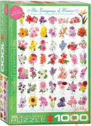 EUROGRAPHICS The Language of Flowers 1000 db-os (6000-0579)