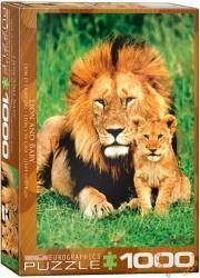 EUROGRAPHICS Lion & Baby 1000 db-os (6000-1148)