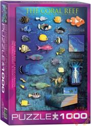 EUROGRAPHICS The Coral Reef 1000 db-os (6000-1170)