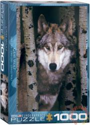 EUROGRAPHICS Gray Wolf 1000 db-os (6000-1244)