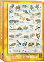 EUROGRAPHICS Snakes 1000 db-os (6000-2610)
