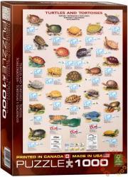 EUROGRAPHICS Turtles and Tortoises 1000 db-os (6000-3007)