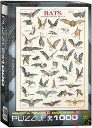 EUROGRAPHICS Bats 1000 db-os (6000-3820)