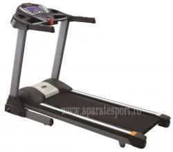 FitTronic G4600
