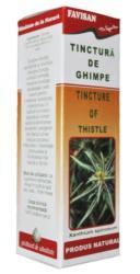 Favisan Tinctura de Ghimpe 50ml