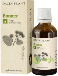DACIA PLANT Tinctura de Brusture 50ml
