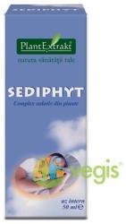 PlantExtrakt Sediphyt 50ml