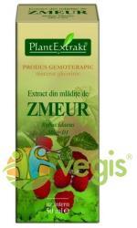 PlantExtrakt Extract din Mladite de zmeur 50ml