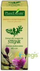 PlantExtrakt Extract din Muguri de Stejar 50ml