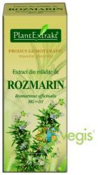 PlantExtrakt Extract din Mladite de Rozmarin 50ml