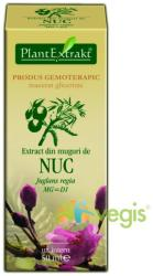 PlantExtrakt Extract din Muguri de Nuc 50ml