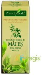 PlantExtrakt Extract din Mladite de Maces 50ml