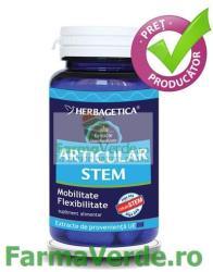 Herbagetica Articular Stem - 60 comprimate