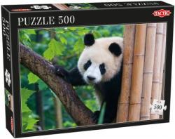 TACTIC Panda 500 db-os