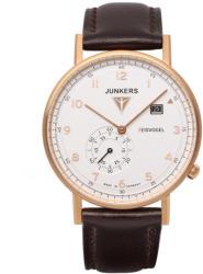 Junkers Eisvogel F13 6732
