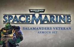 THQ Warhammer 40,000 Space Marine Salamanders Veteran Armour Set DLC (PC)
