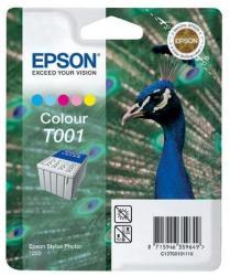 Epson T001