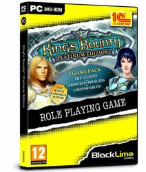 1C Company King's Bounty [Platinum Edition] (PC)