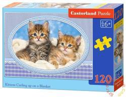 Castorland Doromboló cicák a takarón 120 db-os (B-13111)