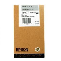 Epson T6027