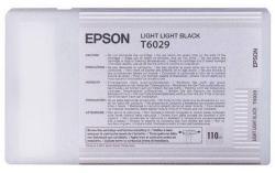 Epson T6029