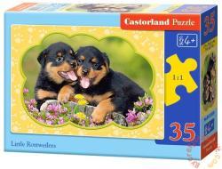 Castorland Rottweiler kölykök 35 db-os (B-035205)