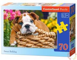 Castorland Édes bulldog 70 db-os (B-007134)