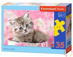 Castorland Cica a dobozban 35 db-os (B-035212)